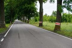 Koroblaski na drodze